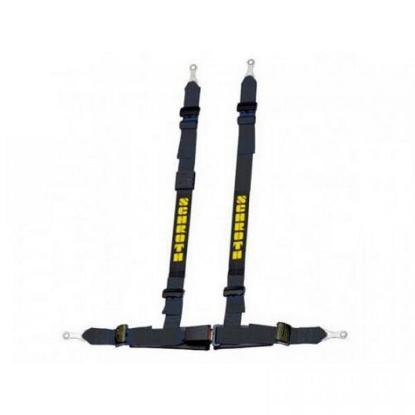 Schroth Rallye ASM harness